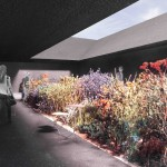 Central garden space (® Peter Zumthor)