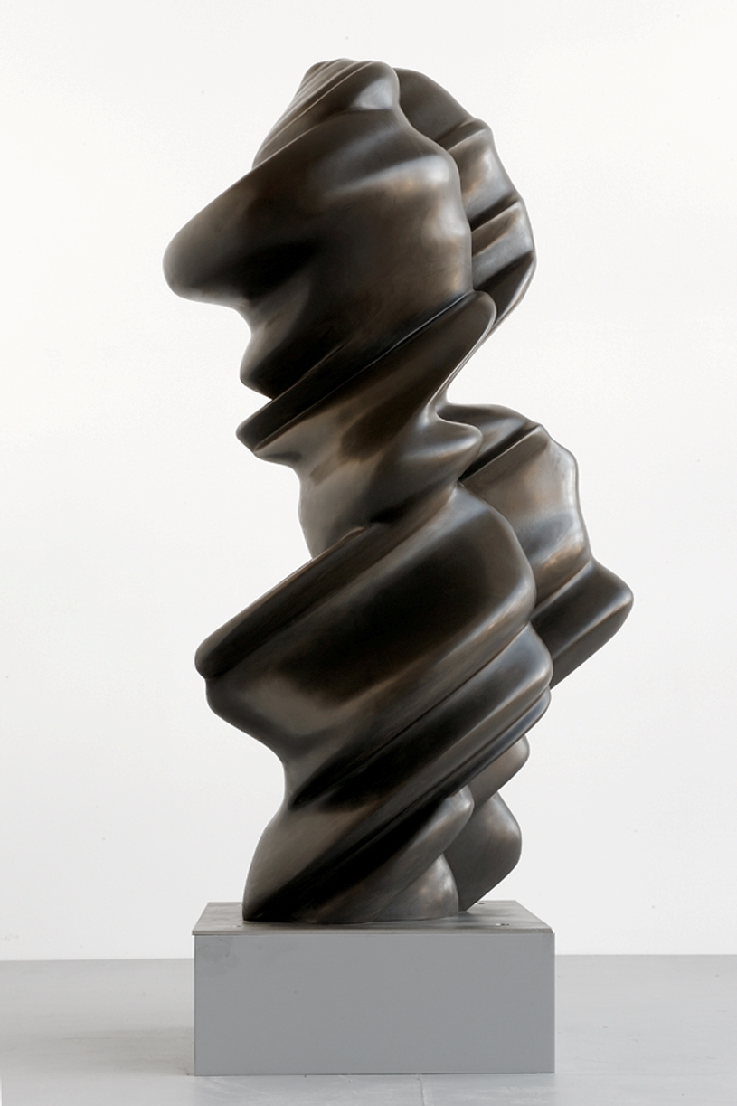 Tony Cragg - Current Version - 2010 - bronzo - cm 185x76x81 - courtesy Tony Cragg Foundation - photo Lilian Johannsson