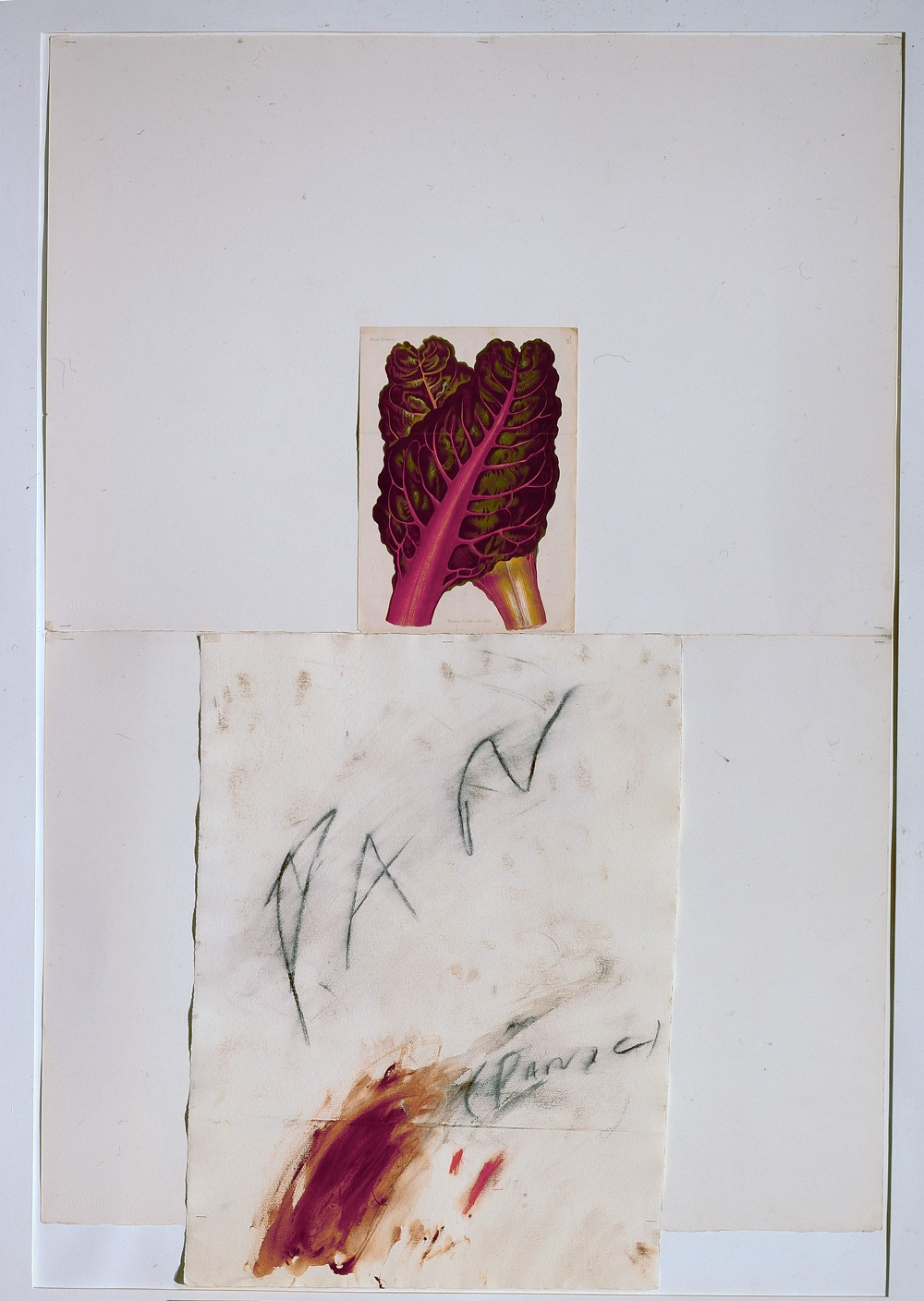 Cy Twombly, Pan, 1975, 148 x 100cm Private Collection, © Cy Twombly, Courtesy: Cy Twombly Archive