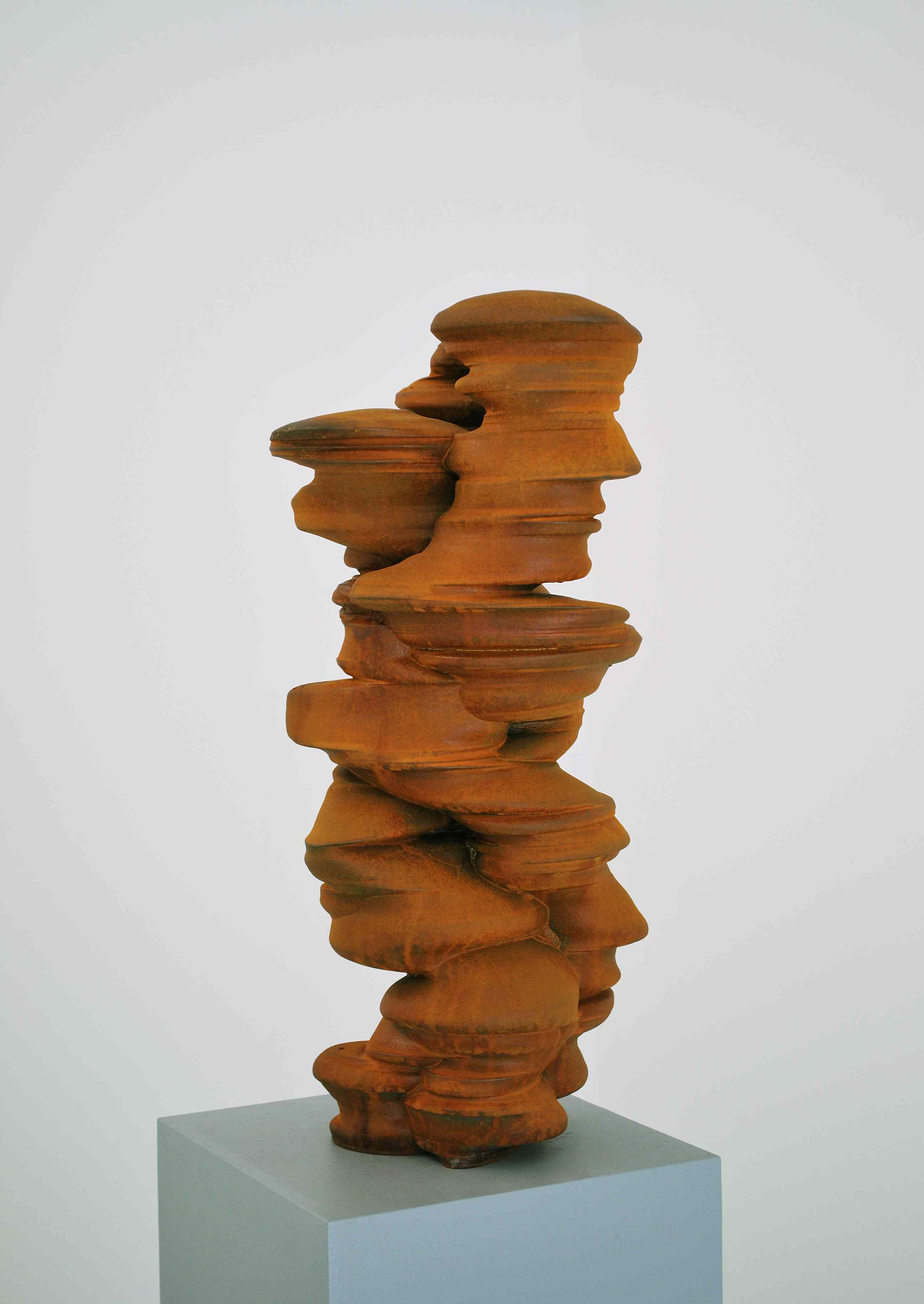 Tony Cragg - Different points of view - 2011
