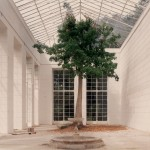 Luigi Ghirri - Caserta, 1987  serie Un piede nellEden - project print - 8 x 10 cm -  Eredi di Luigi Ghirri - Courtesy Galleria Massimo Minini