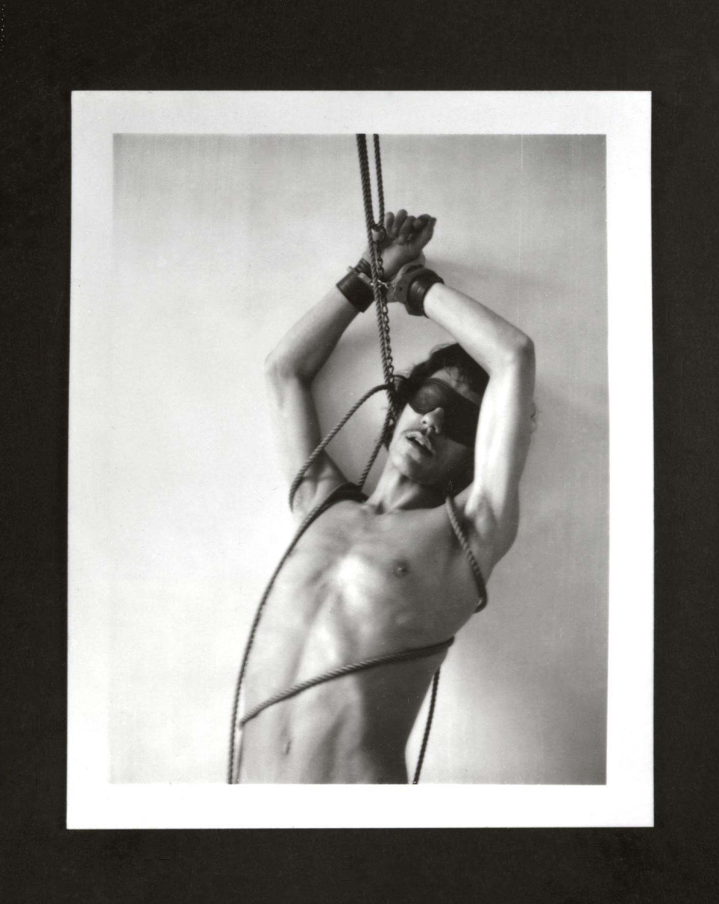 Bondage robert mapplethorpe