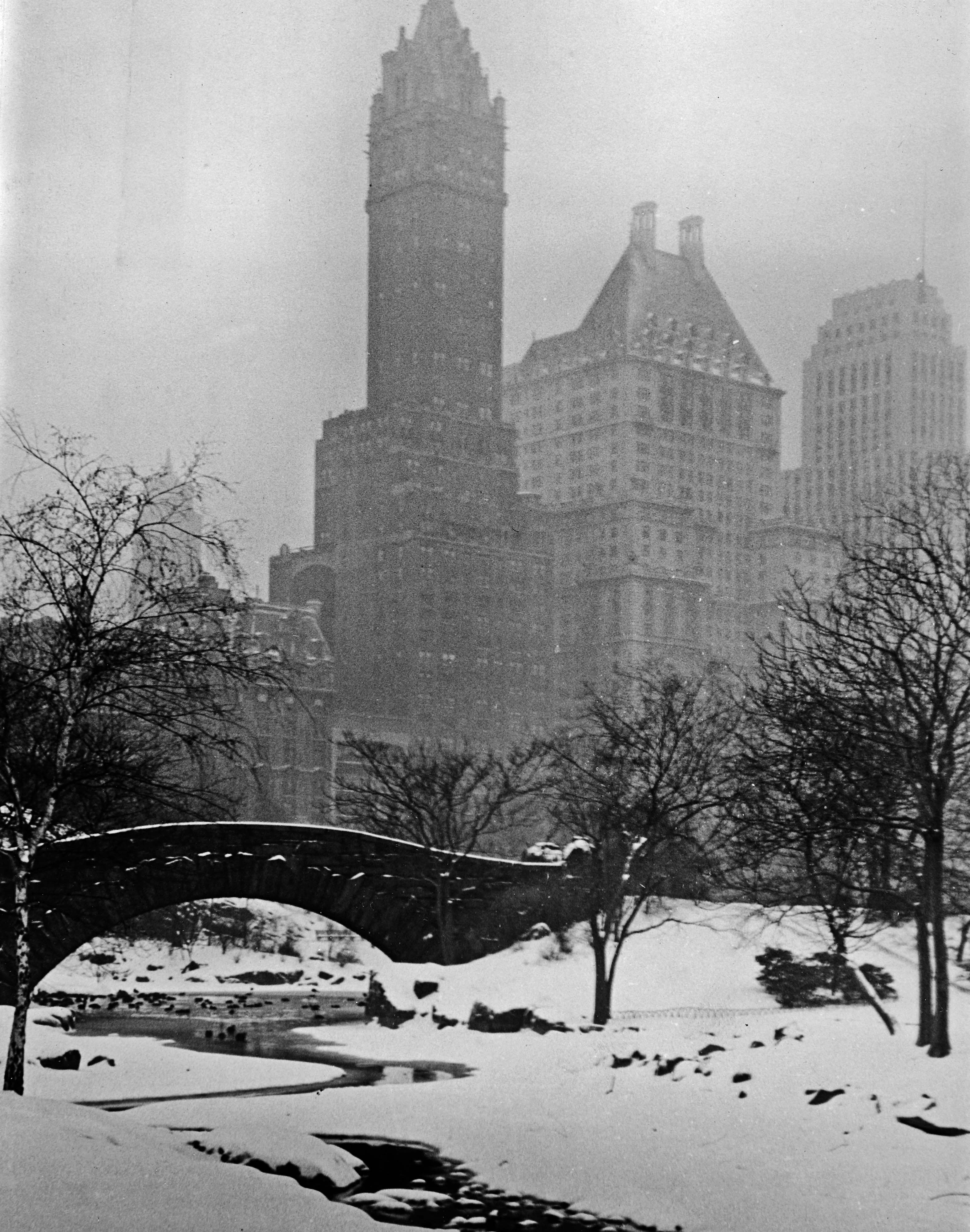 Central Park in inverno - New York