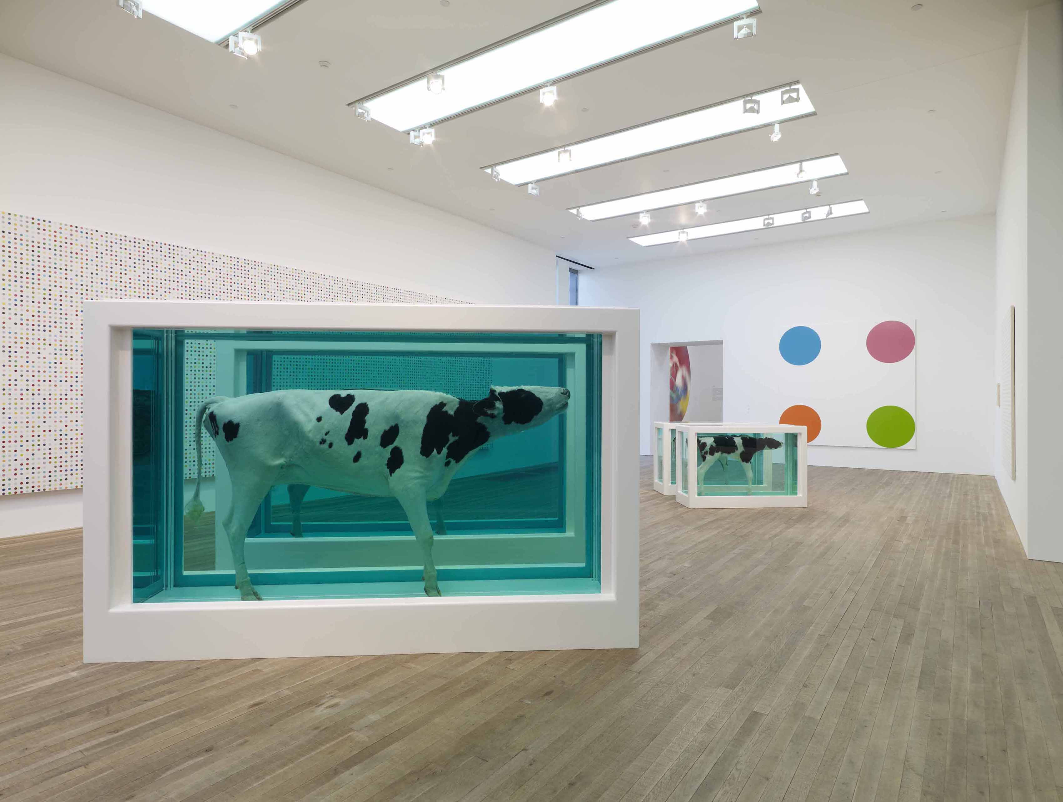 Damien Hirst - Mother and Child Divided - 1993-2007