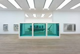 Damien Hirst - The Physical Impossibility of Death in the Mind of Someone Living - 1991