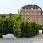 Reggia di Venaria Reale - Art Jungle, 2012 (foto Barbara Reale) 1