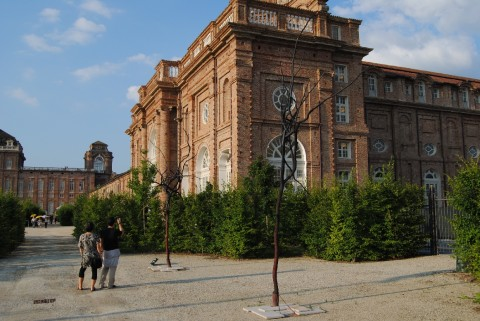 Reggia di Venaria Reale - Art Jungle, 2012 (foto Barbara Reale) 16
