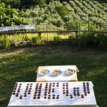 Design With a View - installazione del workshop Phisical Pixels