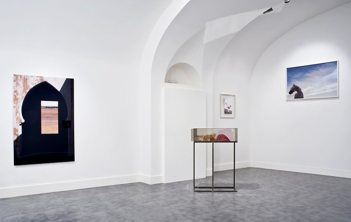 In a favourable light, Silvio Wolf, Claude Collins-Stracensky, Alessandra Spranzi, installation view, Galleria Nicoletta Rusconi, photo Luigi Acerra