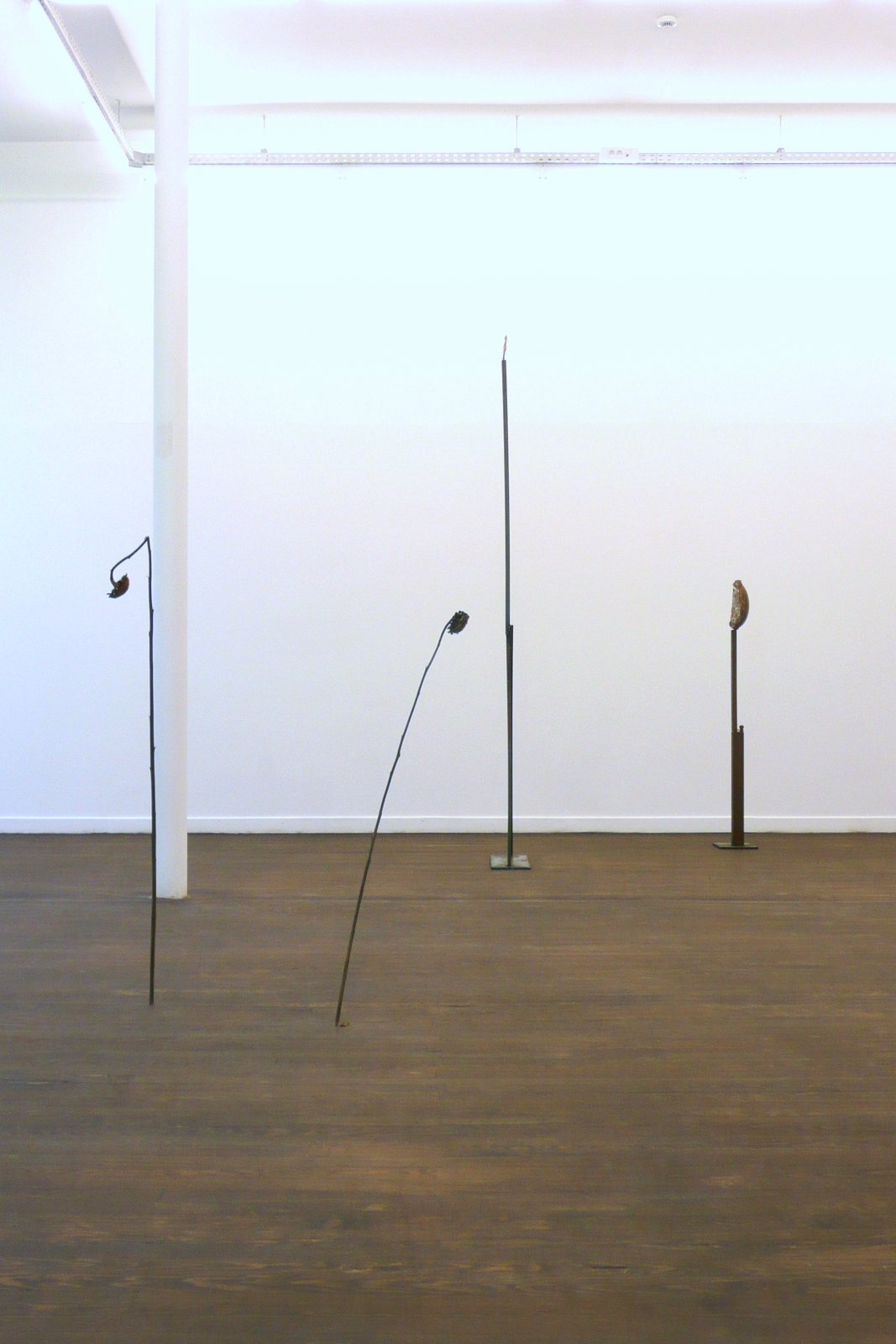 Luca Francesconi, Echo of the Moon solo show, installation view, Crac-Alsace, 2012 4