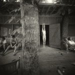 Sally Mann - Hayhook - Courtesy Gagosian Gallery