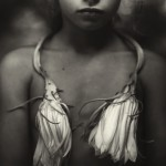 Sally Mann - Night Blooming Cereus - Courtesy Gagosian Gallery