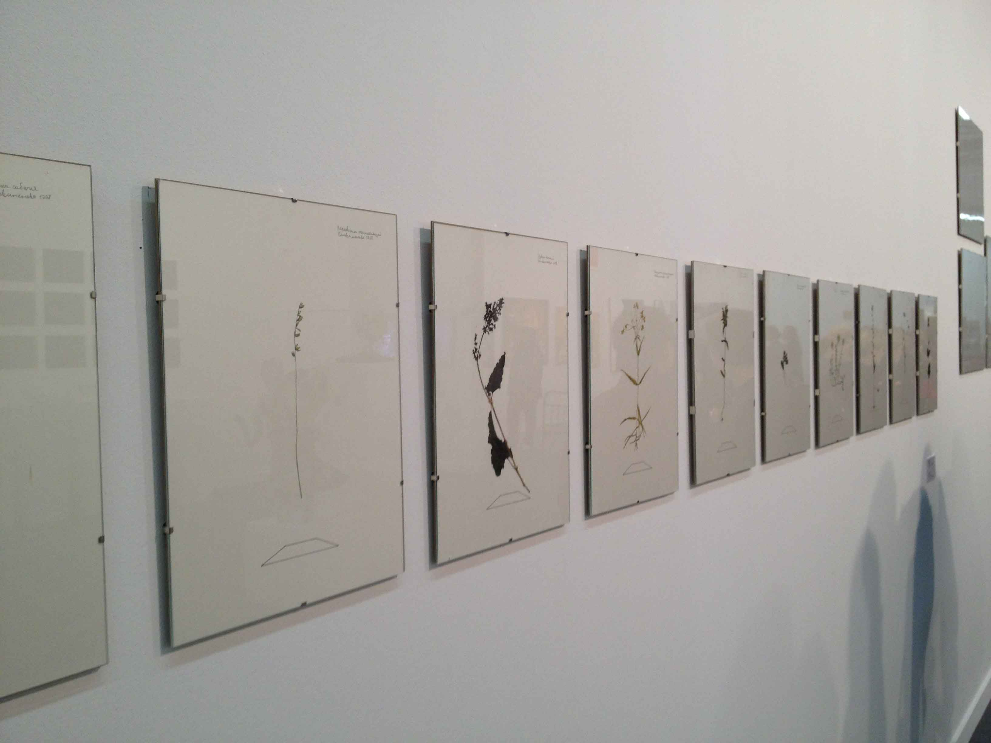 Art Moscow 2012 4