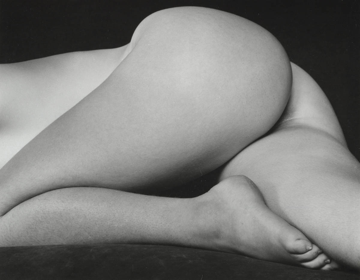 Edward Weston, Nude, 1934, © 1981 Center for Creative Photography, Arizona Board of Regents