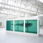 Lo Schermo dell'arte Film Festival 2012 - Damien Hirst Thoughts Work Life di Chris King, 2012