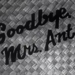 Luana Perilli, Goodbye Mrs, 2012, still da video, 4' 14''