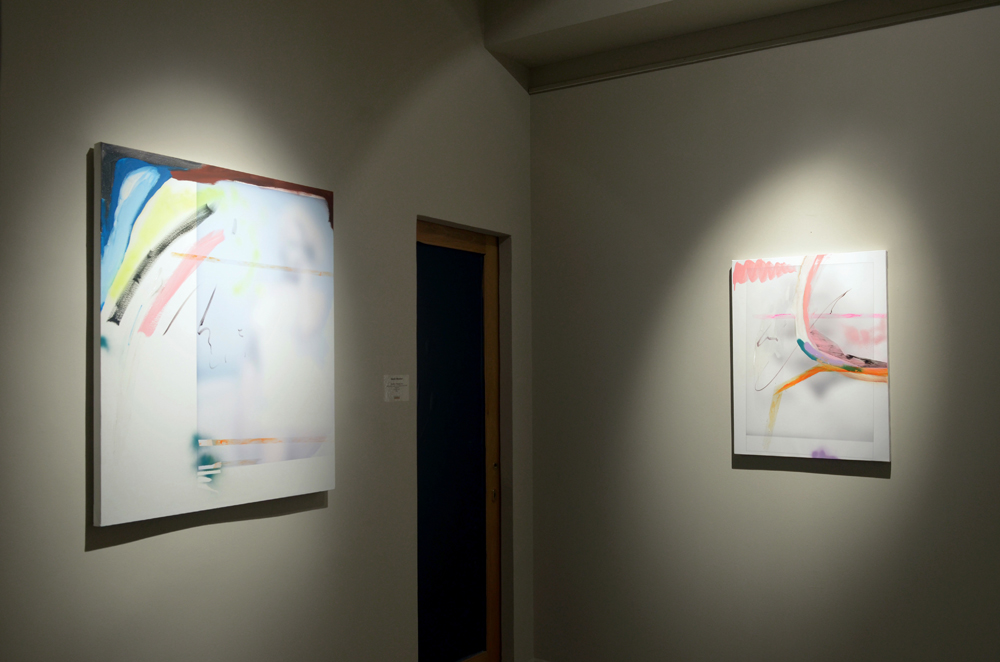 Young painters from Europe and the USA, Guidi & Schoen, Genova 2012 - photo Nuvola Ravera