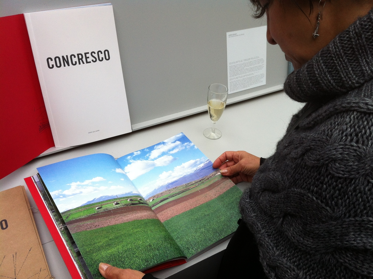 Paris Photo Aperture Foundation Photobook Awards - David Galijaard, Concresco 1