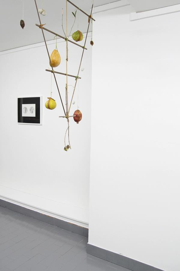 Sarah Stein - Structure of Sensitive Objects - 2012