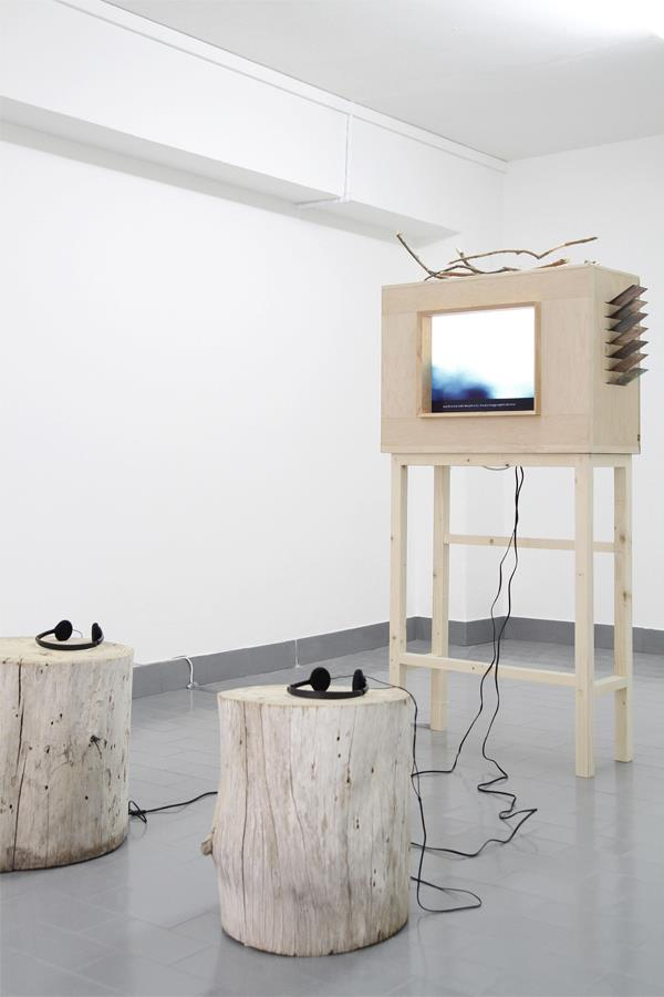 Sarah Stein - Viewing Cabinet with Activated Objects - 2012