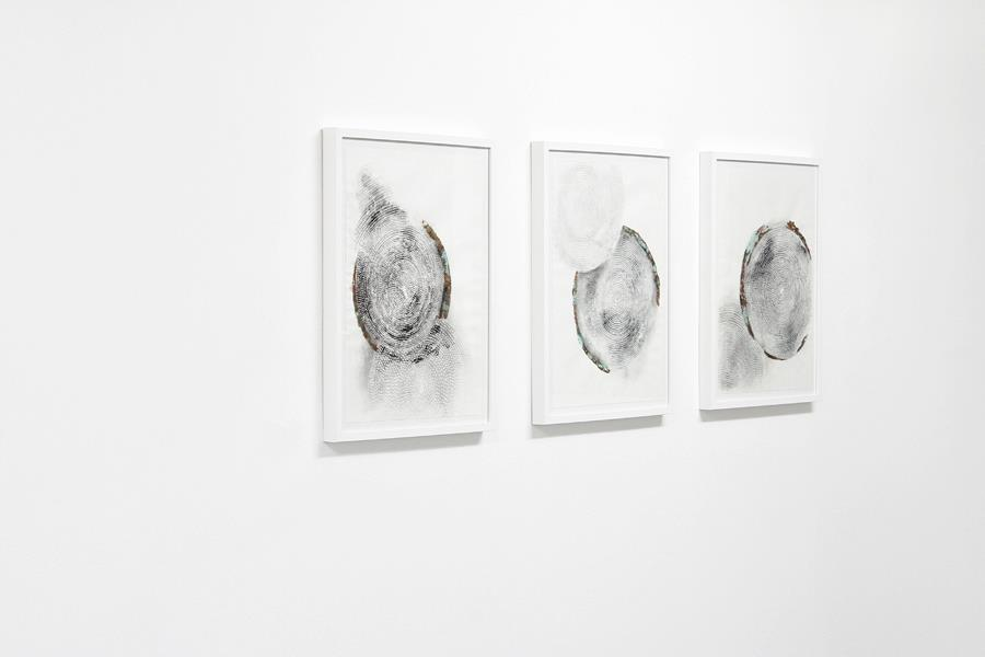 Sarah Stein - Foveal Studies (The circular symmetry of vision) I - 2012