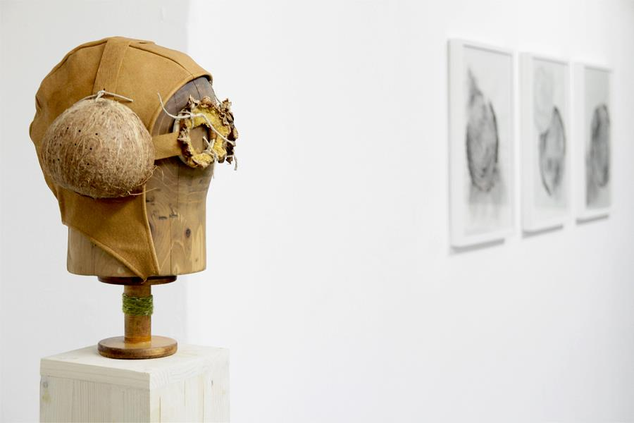 Sarah Stein - Device for Vicarious Perception e Foveal Studies I - 2012
