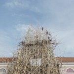 Doug e Mike Starn - Big Bamb, Macro Testaccio, Roma 15