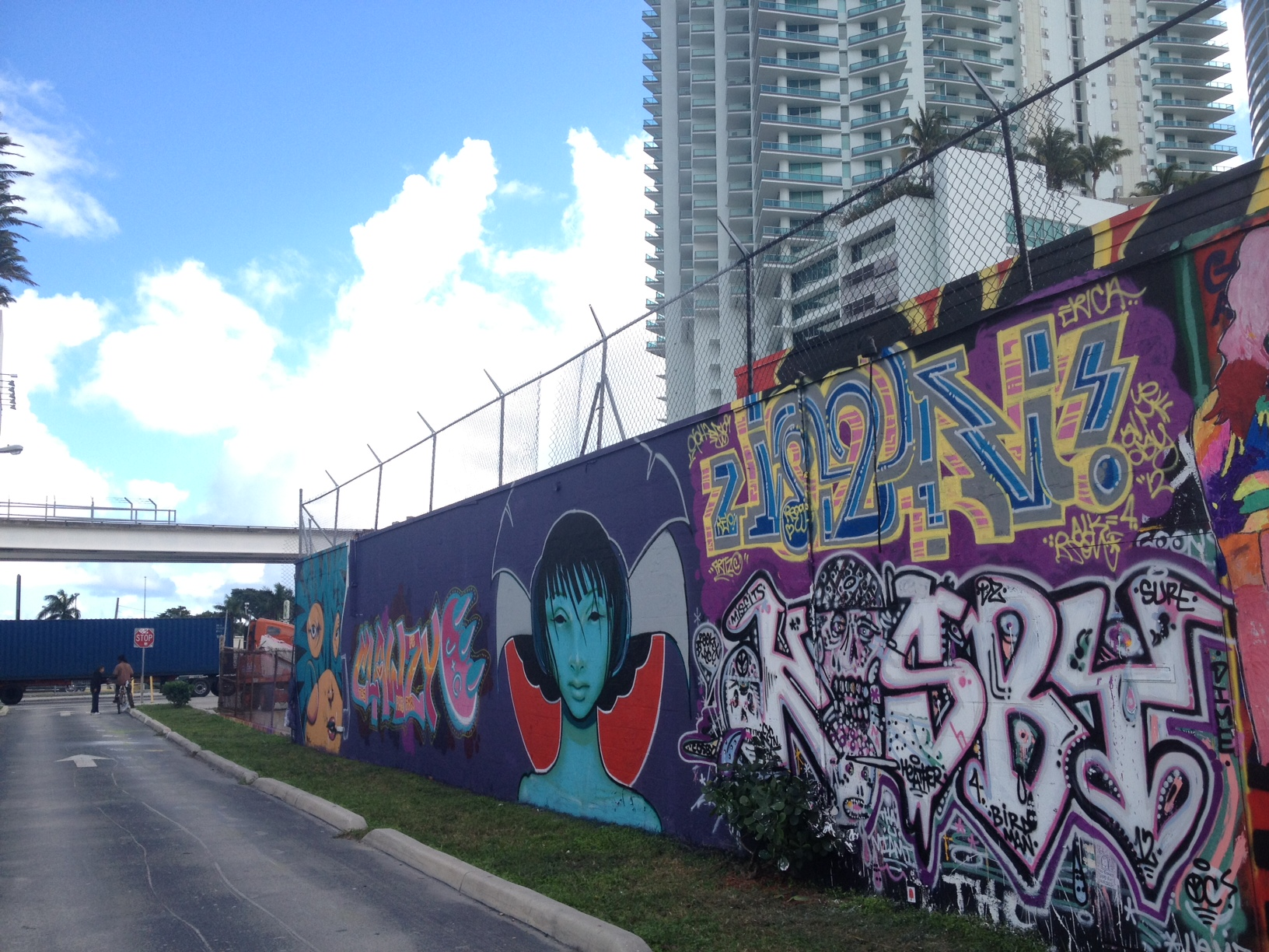 Wynwood Wall, Miami, 2012 18