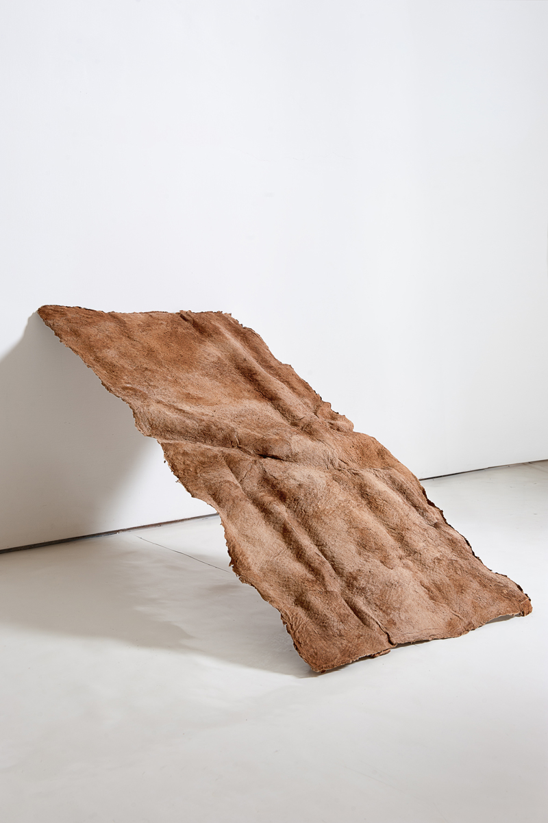 Ivano Troisi, Sentiero II, 2012, courtesy Galleria Tiziana Di Caro, photo: Christian Rizzo