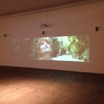 Jesper Just - This is a Landscape of Desire, Herning Museum of Contemporary Art, Danimarca 2