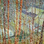 Peter Doig - The Architect's Home in the Ravine