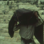 Dani Gal, Zen for TV And The Birth Of The Palestinian Refugee Problem, 2010