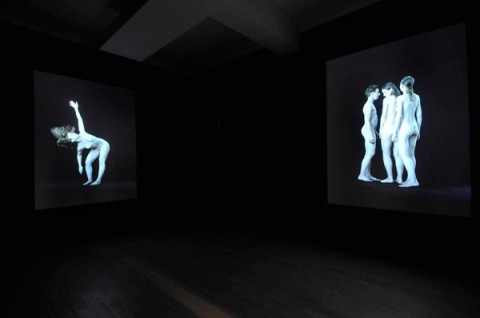 David Michalek – Figure Studies installation view – courtesy Galleria Poggiali e Forconi, Firenze 2013