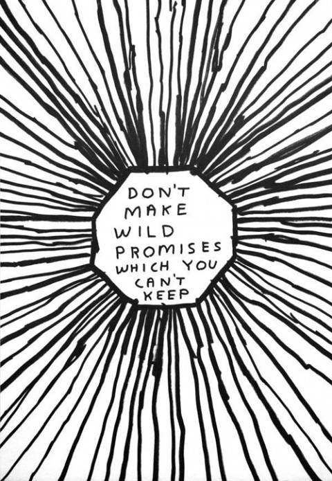 David Shrigley, Don't make wild promises which you can't keep, 2004