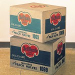 Andy Warhol - Del Monte boxes - The Sonnabend Collection - Ca' Pesaro