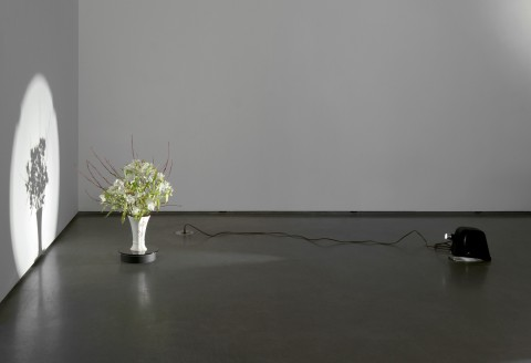 Corin Sworn, Temporal Arrangements, 2010-present - Courtesy of the artist and Kendall Koppe, Glasgow