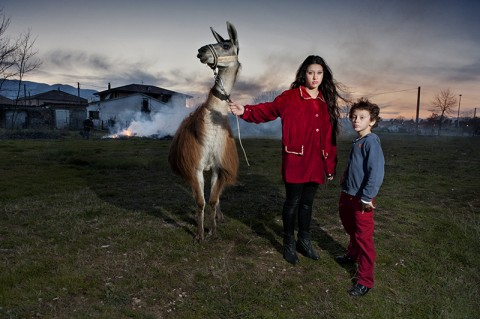 Paola Serino, Megan, the llama and the boy - Henry Niuman Circus