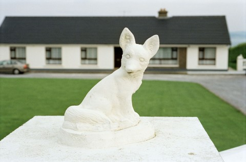 Martin Parr, A gatebost ornament. Tralee, County Kerry, Ireland. 1996 © Martin Parr/ Magnum Photos