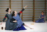 "Avignon Festival 2012 - ""The four season restaurant"" di Romeo Castellucci"