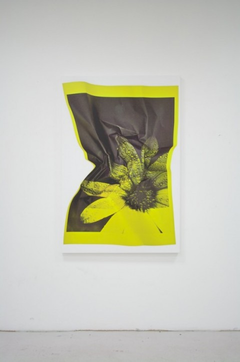 Riccardo Previdi, Test (Yellow Flower), 2010