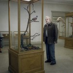 A Pigeon Sat on a Branch Reflecting on Existence di Roy Andersson .- Leone d'Oro, miglior regia