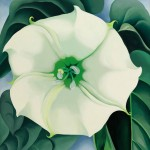 Georgia O'Keeffe, Jimson Weed, White Flower No 1
