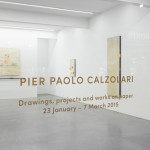 Installation View, Pier Paolo Calzolari, Ronchini Gallery, 23 January - 7 March 2015, Courtesy Ronchini Gallery (1)