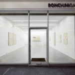 Installation View, Pier Paolo Calzolari, Ronchini Gallery, 23 January - 7 March 2015, Courtesy Ronchini Gallery (16)