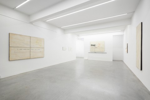 Installation View, Pier Paolo Calzolari, Ronchini Gallery, 23 January - 7 March 2015, Courtesy Ronchini Gallery (4)