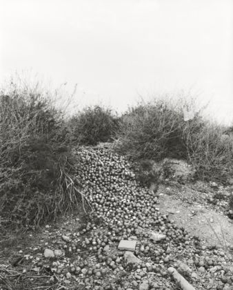Senza titolo, dalla serie Almería. Where Gold Was Found, 2014 © Vanessa Winship