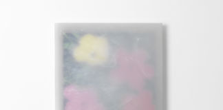 Herbert Hamak – Point Alpha. Flowers by Andy Warhol - courtesy Studio la Città, Verona