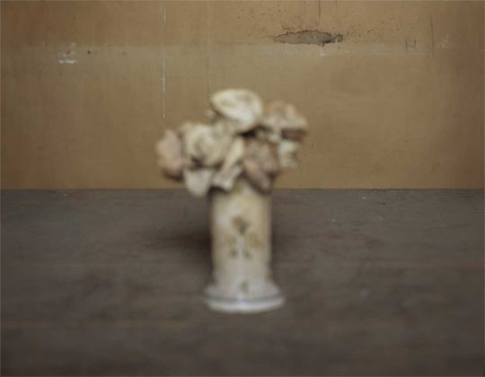 Brigitte March Niedermair, transition_Giorgio Morandi, 2012-13