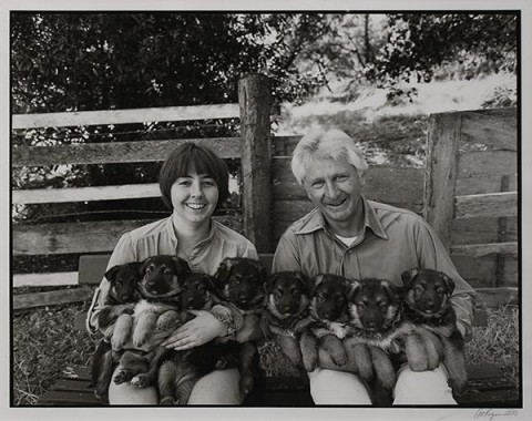 Art Rogers, Puppies, 1980