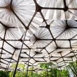 MPavilion, Melbourne - copyright Timothy Burgess